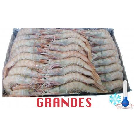 GAMBAS BLANCAS  GRANDES CRUDAS CONGELADAS