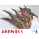 BOCAS GRANDES CRUDAS CONGELADAS