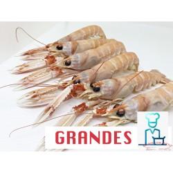 CIGALAS  GRANDES COCIDAS