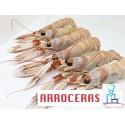 CIGALAS  ARROCERAS COCIDAS