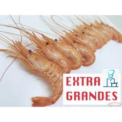 QUISQUILLAS EXTRA GRANDES COCIDAS