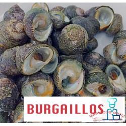 BURGAILLOS