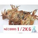 NECORAS COCIDAS CONGELADAS 1/2 KG