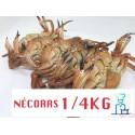 NECORAS COCIDAS CONGELADAS 1/4 KG